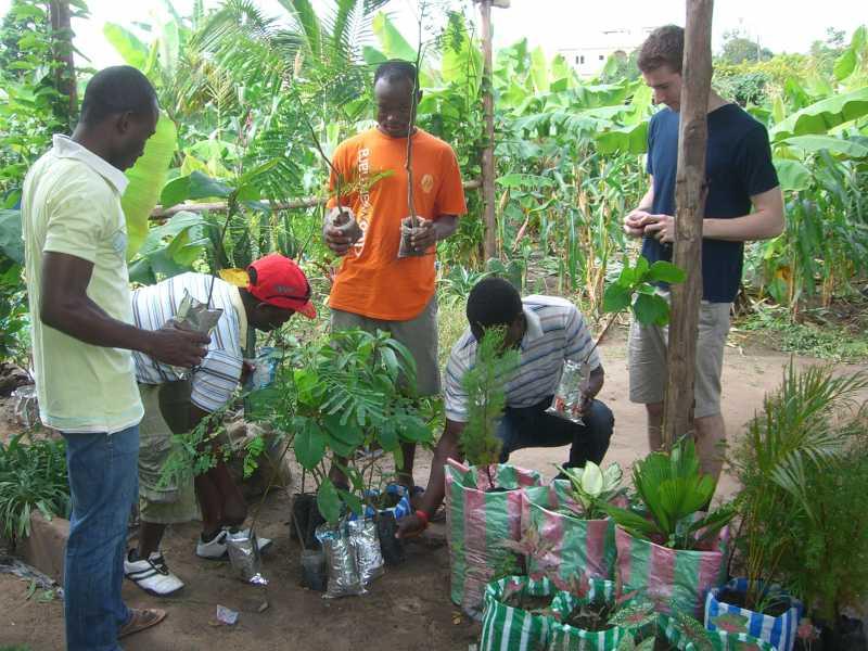 Le traitement des produits de la récolte dans les ménages en Afrique