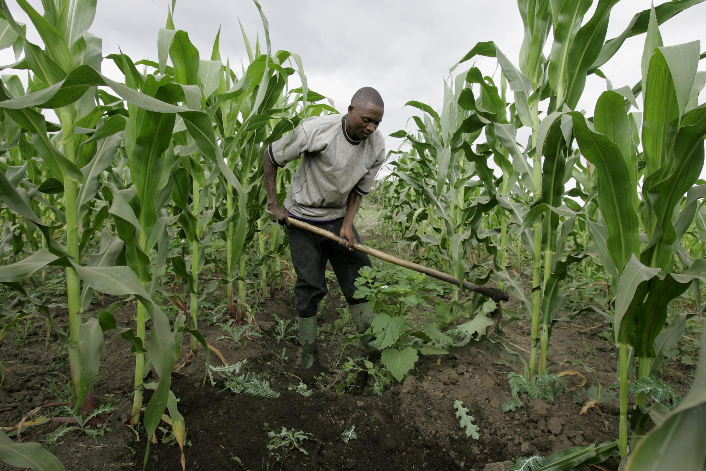 Savoir-faire nécessaire à la génération de richesse en Afrique
