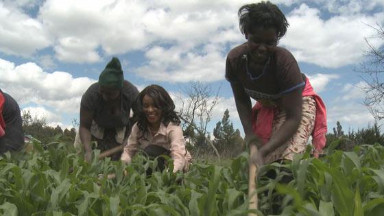 Les principes générateurs de revenus en Afrique