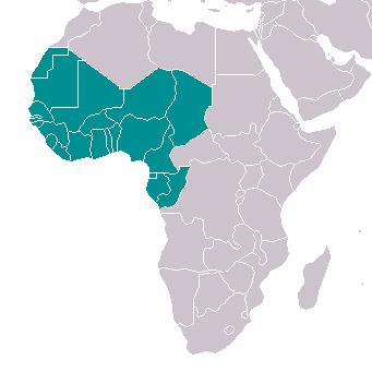 Afrique de l'Ouest Liste d'entreprises