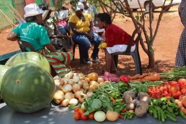 Livraison de fruits et légumes bio à domicile en Afrique